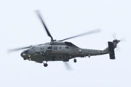 飛行機ゆうちゃんさんが、厚木飛行場で撮影した海上自衛隊 SH-60Kの航空フォト(飛行機 写真・画像)
