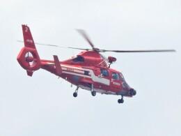 kaeru6006さんが、東京ヘリポートで撮影した東京消防庁航空隊 AS365N3 Dauphin 2の航空フォト(飛行機 写真・画像)