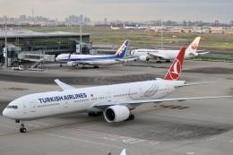 パピヨンさんが、羽田空港で撮影したターキッシュ・エアラインズ 777-3F2/ERの航空フォト(飛行機 写真・画像)