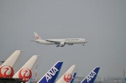 hirokongさんが、羽田空港で撮影した日本航空 777-346/ERの航空フォト(飛行機 写真・画像)