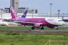 航空フォト:JA812P ピーチ A320