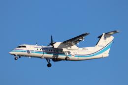 天王寺王子さんが、羽田空港で撮影した海上保安庁 DHC-8-315 Dash 8の航空フォト(飛行機 写真・画像)