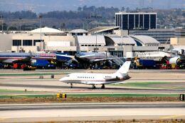 まいけるさんが、ロサンゼルス国際空港で撮影したアメリカ企業所有 Falcon 2000の航空フォト(飛行機 写真・画像)
