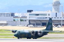 虎太郎19さんが、福岡空港で撮影した航空自衛隊 C-130H Herculesの航空フォト(飛行機 写真・画像)