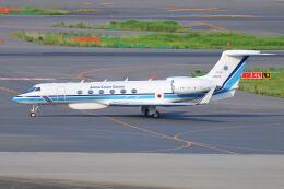 シグナス021さんが、羽田空港で撮影した海上保安庁 G-V Gulfstream Vの航空フォト(飛行機 写真・画像)