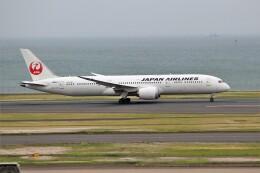 OMAさんが、羽田空港で撮影した日本航空 787-9の航空フォト(飛行機 写真・画像)