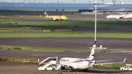 誘喜さんが、羽田空港で撮影したスマート・ウイングス 737-81Mの航空フォト(飛行機 写真・画像)