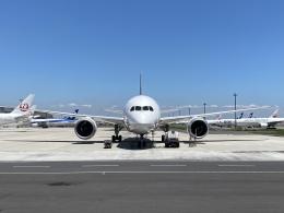かずまっくすさんが、羽田空港で撮影した全日空 787-8 Dreamlinerの航空フォト(飛行機 写真・画像)