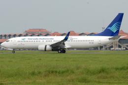 jun☆さんが、スカルノハッタ国際空港で撮影したガルーダ・インドネシア航空 737-86Nの航空フォト(飛行機 写真・画像)