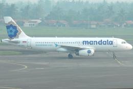 jun☆さんが、スカルノハッタ国際空港で撮影したマンダラ・エアラインズ A320-233の航空フォト(飛行機 写真・画像)