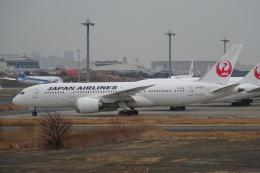 Izumixさんが、羽田空港で撮影した日本航空 787-8 Dreamlinerの航空フォト(飛行機 写真・画像)