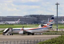 ハム太郎。さんが、羽田空港で撮影したスマート・ウイングス 737-81Mの航空フォト(飛行機 写真・画像)