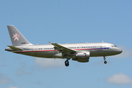 banshee02さんが、成田国際空港で撮影したチェコ空軍 A319-115CJの航空フォト(飛行機 写真・画像)