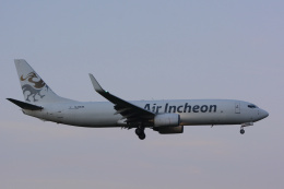 banshee02さんが、成田国際空港で撮影したエア・インチョン 737-86J/SFの航空フォト(飛行機 写真・画像)