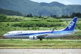 M.Tさんが、宮古空港で撮影した全日空 737-8ALの航空フォト(飛行機 写真・画像)