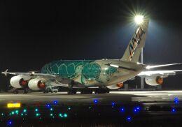 Syunbou13さんが、成田国際空港で撮影した全日空 A380-841の航空フォト(飛行機 写真・画像)