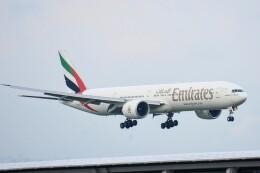 M.Tさんが、関西国際空港で撮影したエミレーツ航空 777-31H/ERの航空フォト(飛行機 写真・画像)