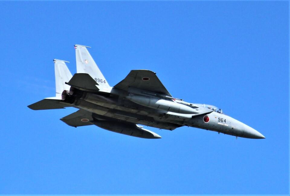 こびとさんさんの航空自衛隊 Mitsubishi F-15J Eagle (82-8964) 航空フォト