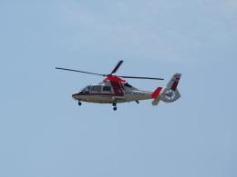 熱血男子さんが、札幌飛行場で撮影した朝日航洋 AS365N3 Dauphin 2の航空フォト(飛行機 写真・画像)