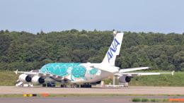 誘喜さんが、成田国際空港で撮影した全日空 A380-841の航空フォト(飛行機 写真・画像)