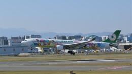 pottanさんが、福岡空港で撮影したエバー航空 A330-302Xの航空フォト(飛行機 写真・画像)