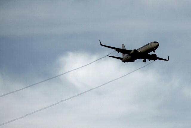 動物村猫君さんが、大分空港で撮影した日本航空 737-846の航空フォト(飛行機 写真・画像)