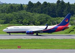 じーく。さんが、成田国際空港で撮影した広東龍浩航空 737-8AS(BCF)の航空フォト(飛行機 写真・画像)