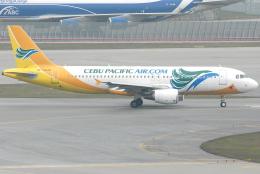 jun☆さんが、香港国際空港で撮影したセブパシフィック航空 A320-214の航空フォト(飛行機 写真・画像)