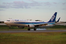 なかすぃ~さんが、伊丹空港で撮影した全日空 737-881の航空フォト(飛行機 写真・画像)