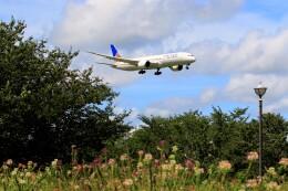 ☆ライダーさんが、成田国際空港で撮影したユナイテッド航空 787-9の航空フォト(飛行機 写真・画像)