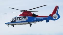 航空見聞録さんが、神戸空港で撮影した川崎市消防航空隊 AS365N3 Dauphin 2の航空フォト(飛行機 写真・画像)