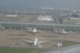 ガスパールさんが、羽田空港で撮影した全日空の航空フォト(飛行機 写真・画像)