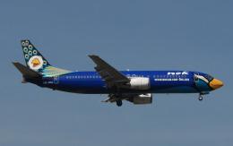 航空フォト:HS-DDJ ノックエア 737-400