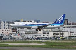 神宮寺ももさんが、福岡空港で撮影した全日空 737-881の航空フォト(飛行機 写真・画像)