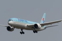 panchiさんが、成田国際空港で撮影した大韓航空 787-9の航空フォト(飛行機 写真・画像)