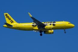 zettaishinさんが、ジェネラル・エドワード・ローレンス・ローガン国際空港で撮影したスピリット航空 A320-232の航空フォト(飛行機 写真・画像)