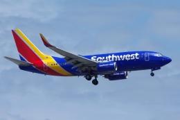 zettaishinさんが、ジェネラル・エドワード・ローレンス・ローガン国際空港で撮影したサウスウェスト航空 737-7H4の航空フォト(飛行機 写真・画像)