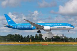 Tomo-Papaさんが、成田国際空港で撮影した厦門航空 787-9の航空フォト(飛行機 写真・画像)