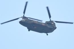 500さんが、自宅上空で撮影した陸上自衛隊 CH-47JAの航空フォト(飛行機 写真・画像)
