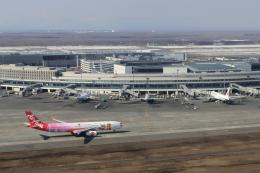 Take51さんが、新千歳空港で撮影したタイ・エアアジア・エックス A330-343Xの航空フォト(飛行機 写真・画像)