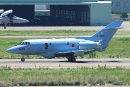 yabyanさんが、小松空港で撮影した航空自衛隊 U-125A(Hawker 800)の航空フォト(飛行機 写真・画像)