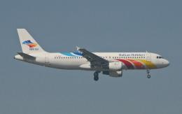 hs-tgjさんが、スワンナプーム国際空港で撮影したバンコクエアウェイズ A320-212の航空フォト(飛行機 写真・画像)