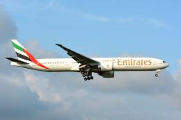 アルビレオさんが、成田国際空港で撮影したエミレーツ航空 777-31H/ERの航空フォト(飛行機 写真・画像)