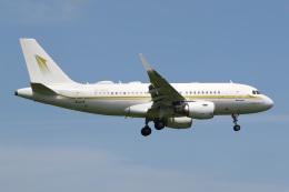 JETBIRDさんが、成田国際空港で撮影したスカイ・プライム A319-115CJの航空フォト(飛行機 写真・画像)