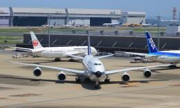 Rsaさんが、羽田空港で撮影したルフトハンザドイツ航空 747-830の航空フォト(飛行機 写真・画像)