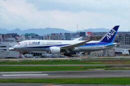 yoshibouさんが、福岡空港で撮影した全日空 787-8 Dreamlinerの航空フォト(飛行機 写真・画像)