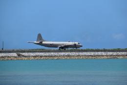 Anchorage2000さんが、那覇空港で撮影した海上自衛隊 P-3Cの航空フォト(飛行機 写真・画像)
