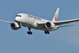 qooさんが、福岡空港で撮影した日本航空 787-8 Dreamlinerの航空フォト(飛行機 写真・画像)