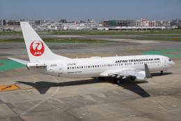 神宮寺ももさんが、福岡空港で撮影した日本トランスオーシャン航空 737-8Q3の航空フォト(飛行機 写真・画像)