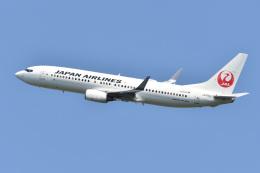れぐぽよさんが、小松空港で撮影した日本航空 737-846の航空フォト(飛行機 写真・画像)